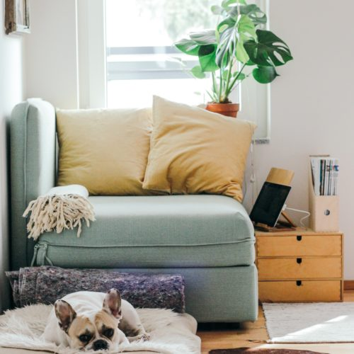 5 Tips For Downsizing: How to Decide What's Worth Keeping